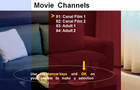 WebH TV - Movie Channels